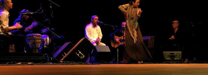 Cursus flamencodans niveau intermedio vanaf 9 maart 2020 in Den Haag